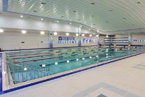 수영장 사진