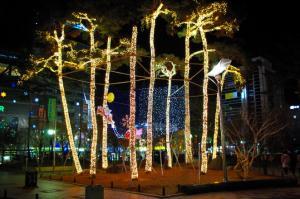 도심공원 야간조명경관 사진 사진