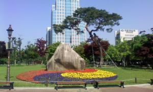국채보상공원내태극문양꽃화단조성
