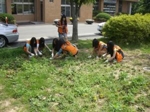 명복공원 청소년 자원봉사 사진
