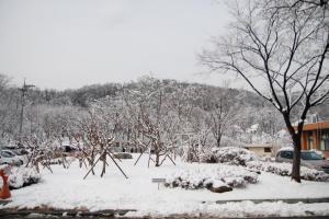 명복공원의 겨울 사진