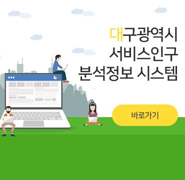 대구광역시 서비스인구 분석정보 시스템